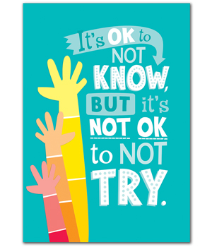 Class Decoratives : CTP0311 It's Okay not to Know...Poster